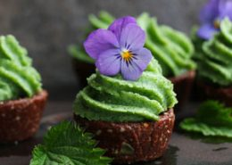 Raw Chocolate Cupcakes